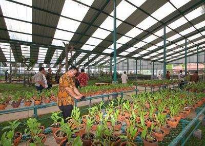 saraswanti group - soft launching ladang anggrek_033